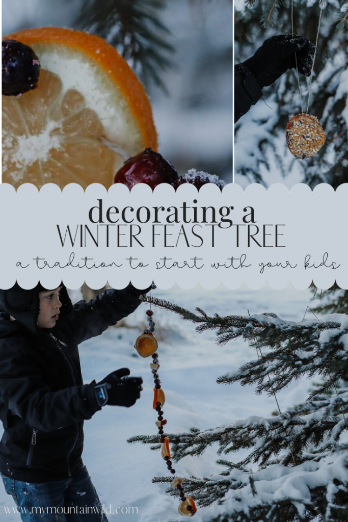 decorating a winter feast tree for birds and squirrels