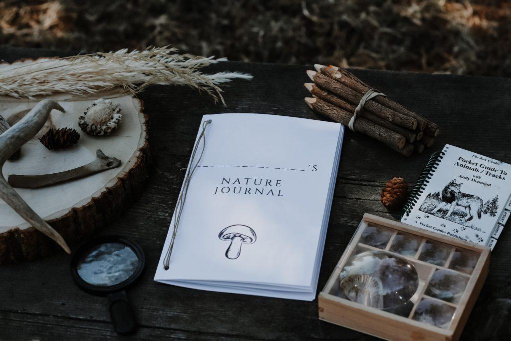 free printable kids nature journal