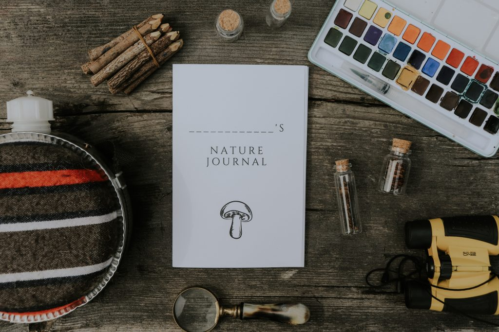 Updated Printable Kids Nature Journal